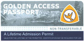 Picture of the old golden access pass