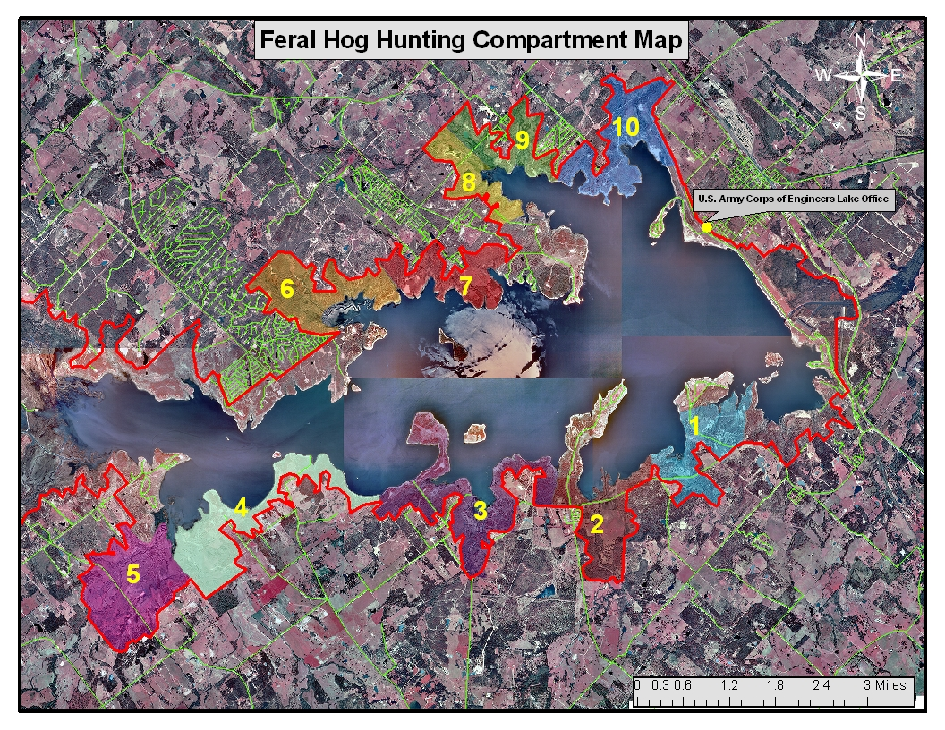 Over The Past Five Years Feral Hogs Have Become An Ever Increasing Problem Around Somerville Lake Feral Hogs Are A Nuisance Animal And Are Notorious For